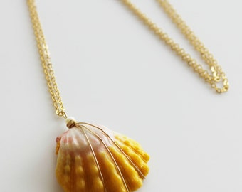 Sunrise shell necklace/goldfilled