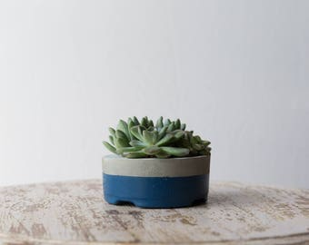 Mother's Day Gift for Her, Small Concrete Planter, Navy