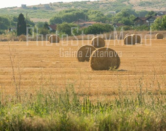 Rural photography Rustic Field Hay Bales Country Scenes Natural photography Wall Decor Farmland Landscape photos Fine Art