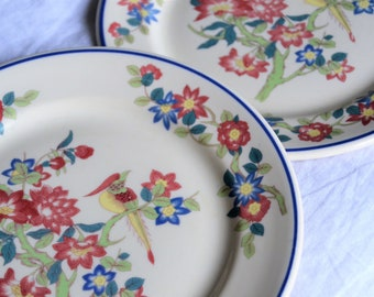 FLORAL PLATES Set of Two Shenango China New Castle Pa Reds and Blues with Bird Elegant Floral Decor