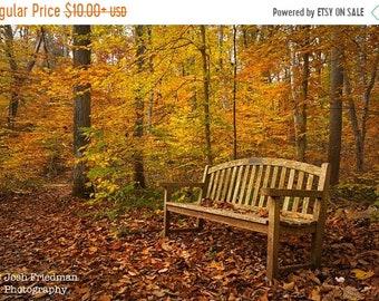 SALE 20% Off Autumn Bench Photograph Fall Foliage Bowman's Hill Wildflower Preserve Fallen Leaves Yellow Rust Bucks County Pennsylvania Phot