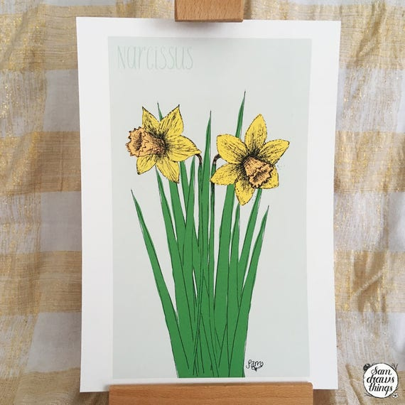 Daffodil art print for the Flower Power Fund