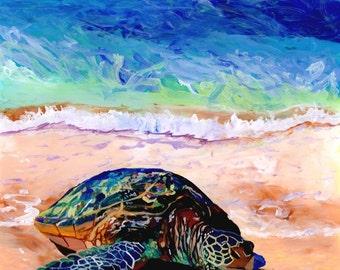 Green Sea Turtle Honu at Poipu Beach 8x8 art print from Kauai Hawaii sand ocean beach Hawaiiana animals whimsical kids room art home decor