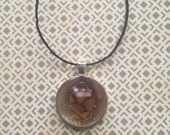 Real Mini Pine Cone Resin Necklace