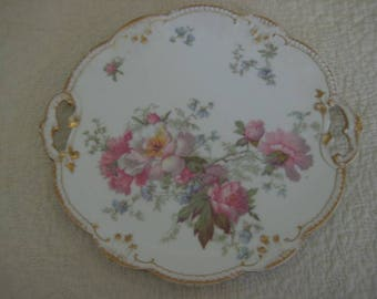 Limoge A K Hand Painted Plate