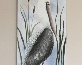 Brown Pelican - Acrylic paint.
