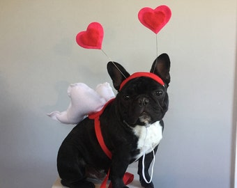 Valentines Day Gift -  CUPID WINGS and HEART hat  - Valentines Day decor  -
