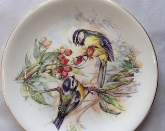 Collectable Duchess Plate  - Pair of blue tits.