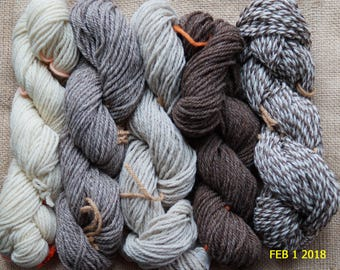 worsted weight yarn: NATURALS COLLECTION   contains 500 yds 5 color pack of 3 ply worsted undyed wool yarn from our USA farm