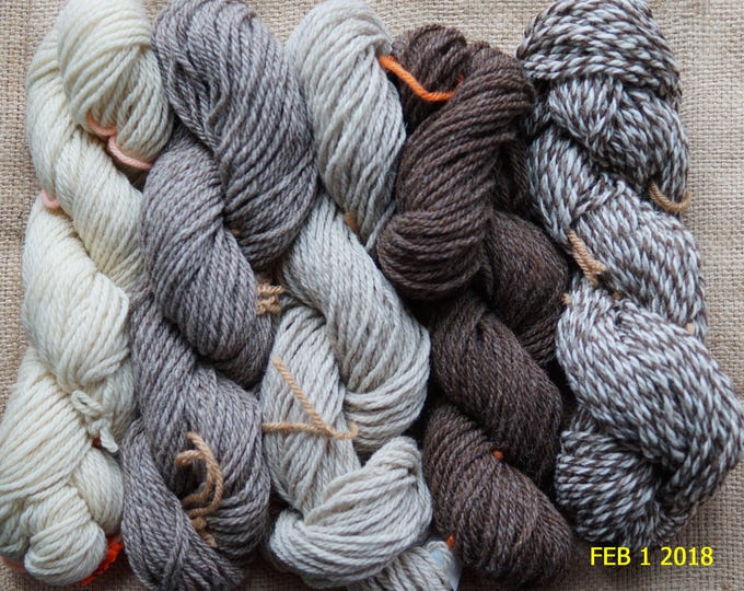 NATURALS COLLECTION   contains 500 yds 5 color pack of 3 ply worsted undyed wool yarn from our USA farm