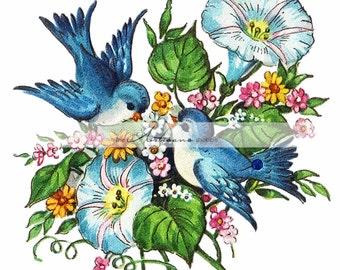 Printable Art Instant Download - Blue Birds Morning Glories Flowers Vintage Art Image - Paper Crafts Scrapbook Altered Art - Floral Bird