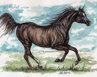 the  arabian horse watercolor painting
