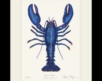 Blue Lobster Limited Edition Signed Print