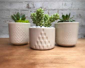 Studded and A line small planter set - made to order - succulent planter set - small planter - ceramic planter - minimalist planter - modern