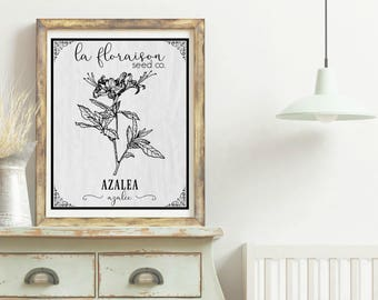 French Cottage Style Seed Packet Printable - Azalea