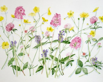 Wild flowers on the common. Limited edition giclee print on archival paper.