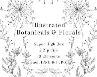 Illustrated Botanical and Floral Art Set, Illustrated Vines, Elegant Illustration, Line Art Illustration, Digital Download, Logo, Branding
