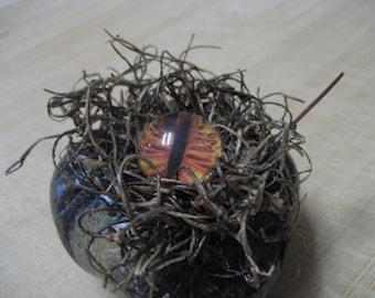 Mossy Swampy Eyeball Eye Creature Palm Stone -