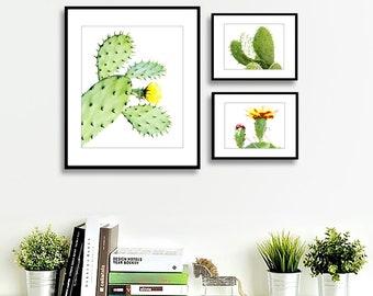 Lot de Cactus impression désert de Cactus situé, cactus impression, impression succulentes, botanique imprimer Cactus, cactus imprimable art, Arizona cactus Wall Art