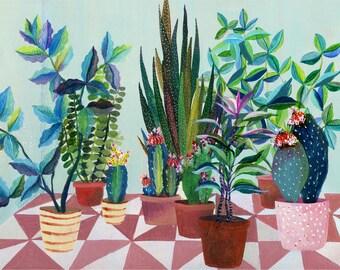Succulent plants garden - illustration - giclee print