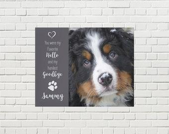 Pet Memorial Canvas 09FHHG - Pet Photo Canvas - Dog Canvas - Pet Memorial - Pet Portrait  - Custom Photo Canvas - Dog Memorial - Pet Loss