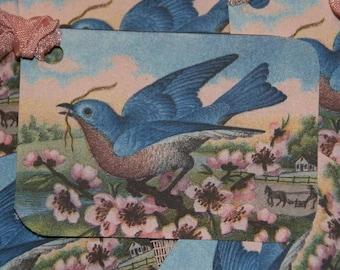 Blue Bird Garden Gift Tags