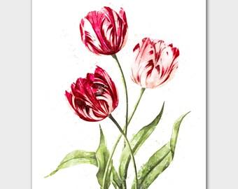 Botanical print, botanical wall art, flower print, watercolor art, flower wall art, floral print, watercolor flowers, watercolor print