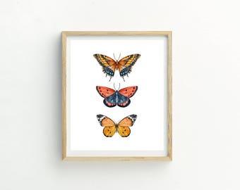 Red Butterfly Print | Butterfly Print | Butterfly Picture | Butterflies | Butterfly Pattern | Butterfly Wall Art | Butterfly Painting | Art