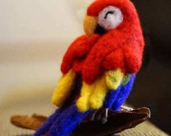 Sleeping Needle felted Red Macaw Parrot