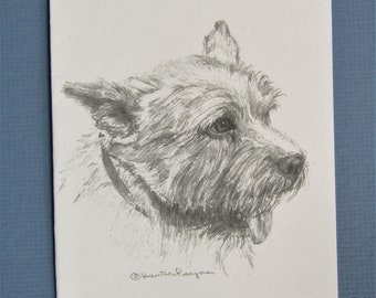 Norwich Terrier note cards, set of 6 plus envelopes, direct from artist