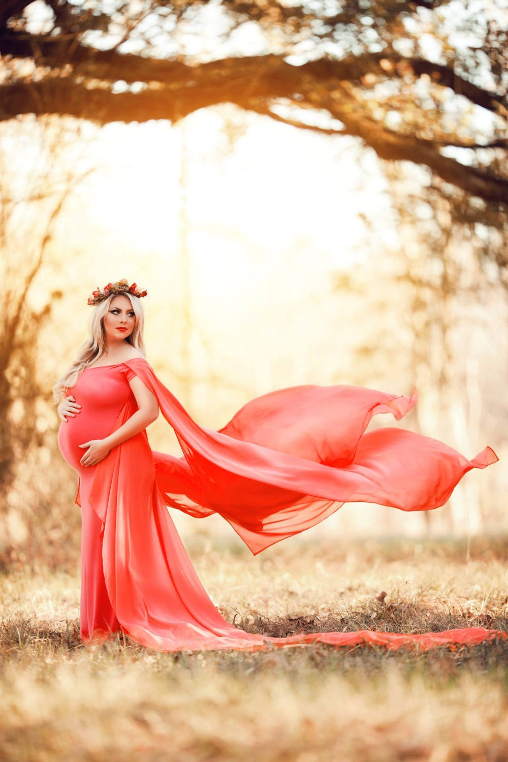 Claire chiffon cape maternity gown chiffon dress off zoom ombrellifo Images