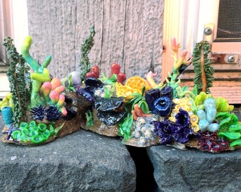 Miniature Coral Reef // Large //