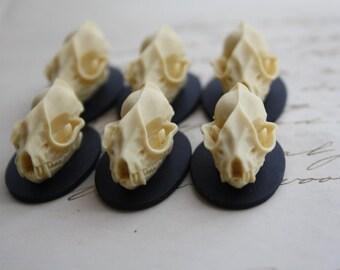 Bat Skull Cameo Cabs Resin Cabochon Taxidermy Animal Dracula Vampire Cameo Bat Steampunk Gothic Goth Skull Black Ivory 25x18mm 6 PIECES