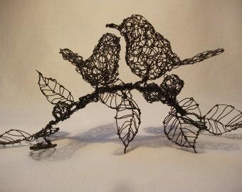 lovebirds on blackberry vine