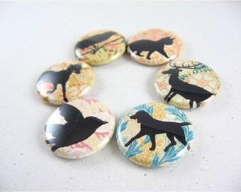 Fridge Magnets Set - Art Nouveau and Animal Silhouettes