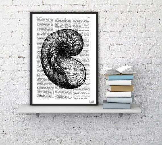 BOGO Sale Book Print Dictionary or Encyclopedia Page Print- Book print Sea Shell V Print on Vintage Dictionary Bookart art SEA038