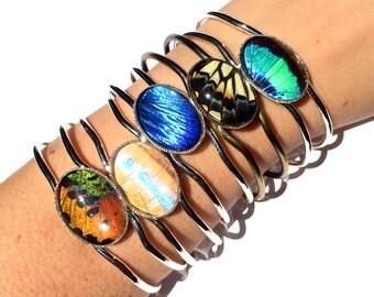 Real Butterfly Wing Bracelet Personalized friendship bracelet for 2 3 4 Terrarium bracelet Unique friendship gifts Terrarium jewelry
