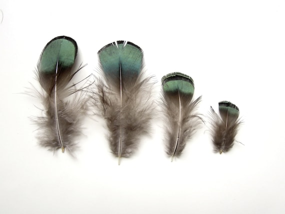 10 Small green feathers - Small feathers -  Small natural feathers - Dark green feathers - Natural feathers - Real feathers - Craft feather
