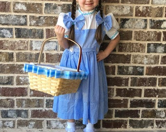 dorothy dress  size 6 child