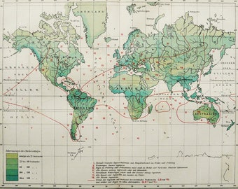 1895 Antique World Map of METEOROLOGY, PRECIPITATIONS. Climate map. Weather. Physics. Rain. 123 years old chart