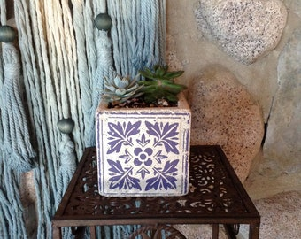 Floral Blue & White cement pot LIVE PLANT, succulent, home decor,  house plant