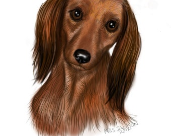 4 Long Haired Dashund Blank Note Cards