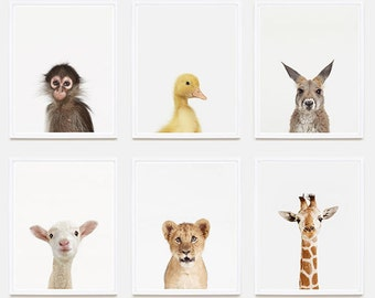 Baby Animal Nursery Art Print: Giraffe Little Darling.