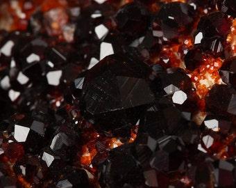Amazing Plate of Dark Red Spessartine Garnet on Albite Mineral Specimen