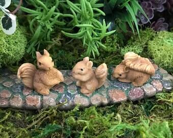 Miniature Baby Squirrels - Set of 3