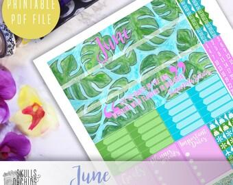 50% OFF! ERIN CONDREN June Monthly View Kit – Printable Planner Stickers