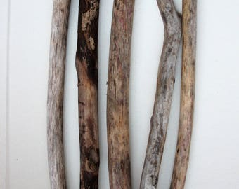 5  wild driftwood sticks art sculpture Wood supply Driftwood pieces for wall art Rustic home decor Natural wood Beach wedding favor