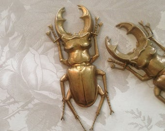 Vintage Bugs/Giant Stag Beetle Bug(1pc)Vintage French Brass Stampings/French Findings/French Finding/Vintage Stampings Brass/Bug Stamping126