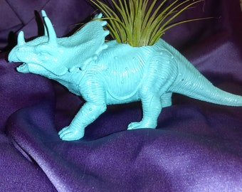 Colorful Dinosaur Planters for succulent or Air plants ON SALE