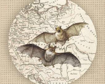 batty I - Bats plate